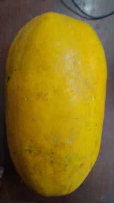 Papaya Big (1.7-2.2kg)