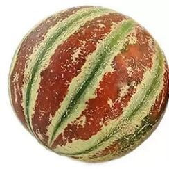 Muskmelon Whole (500-800gm)