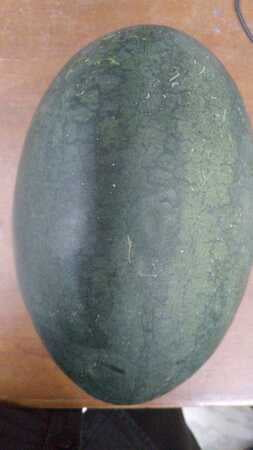 Watermelon Big (1.7-2.6kg)