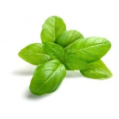 Basil Green 200gm