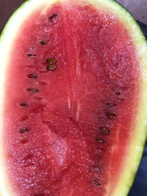 Watermelon Big (2kg+)