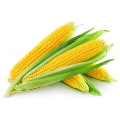 Corn Whole (per pc)