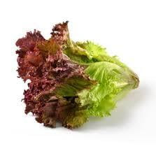 Lettuce Leaves Red 200gm