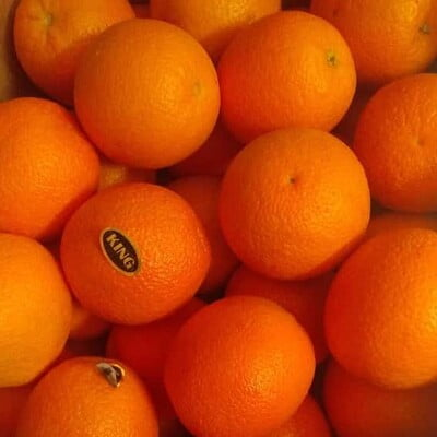 Malta Orange 1KG