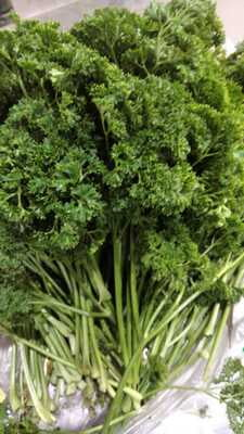 Parsley Leaves 100gm